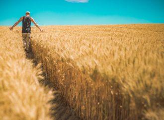 A propos de revenu agricole